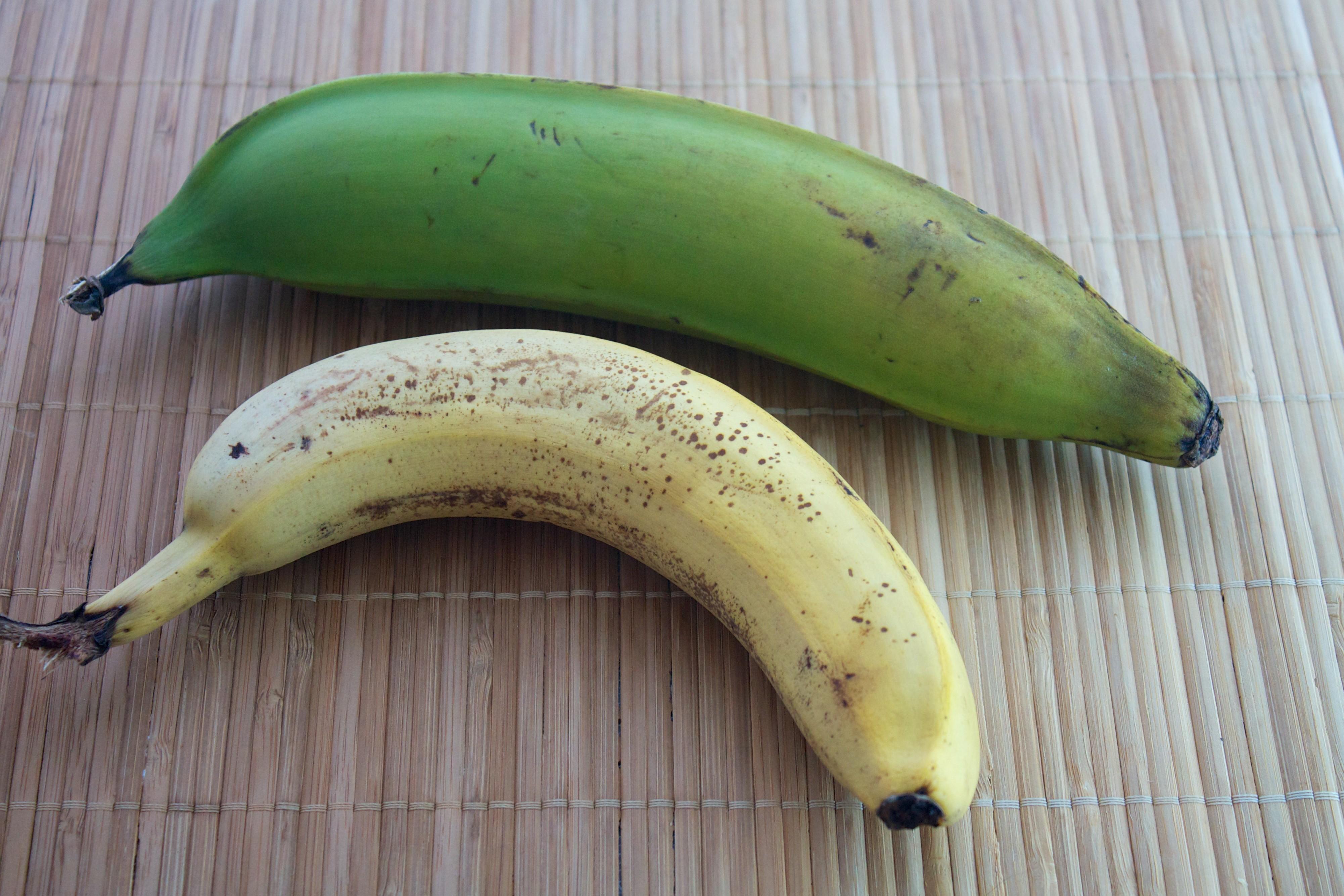 Banan Co Piszczy W Sieci24pl