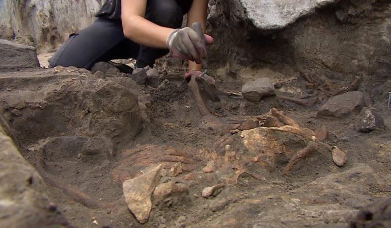 5 tysięcy lat temu w Małopolsce doszło do makabrycznej rzezi. Uczeni odkryli niesamowite sekrety zbiorowej mogiły!