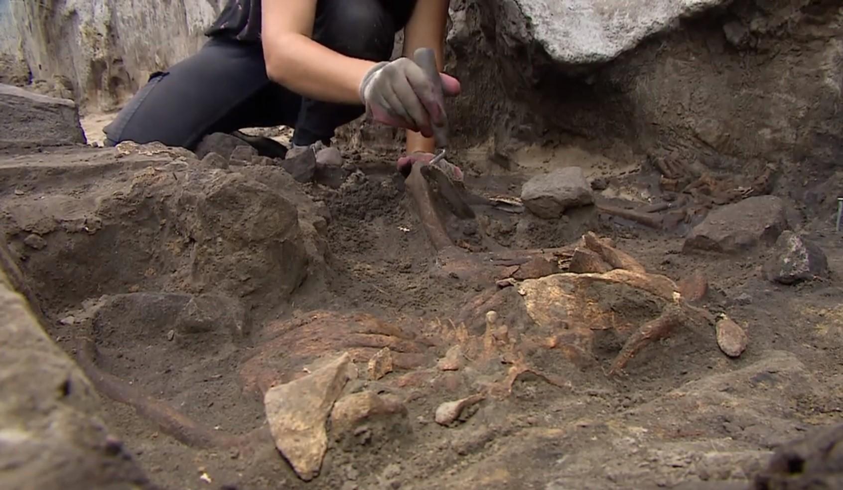 mogiły, eliksir, hybrydy, archeologów odkrycie wielkie