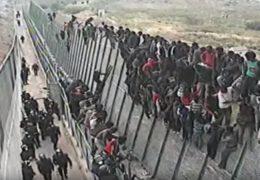 absurd, uchodźcy. imigranci