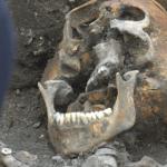 Mazowsze: dziesięć ciał z ODCIĘTYMI GŁOWAMI w zbiorowej mogile! Większość ofiar nie miała nawet 20 lat! Zostali zamordowani przez…