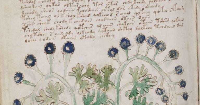 WIELKA ZAGADKA ŚREDNIOWIECZA ROZWIĄZANA? Naukowcy wiedzą w jakim języku napisano najbardziej tajemniczy manuskrypt tej epoki!