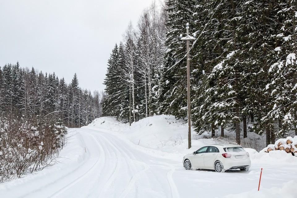 lasu, samochód, las, zwłoki, narciarz