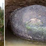 Rolnik myślał, że odkrył jajo pradawnego SMOKA! Uczeni przebadali niezwykłą skamielinę – okazało się, że jest to…