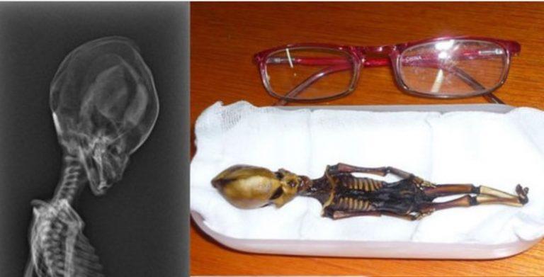 """""""15-centymetrowy KOSMITA"""" to nie przybysz z innej galaktyki! Uczeni rozwikłali tajemnicę najbardziej NIESAMOWITEJ mumii na świecie!"""