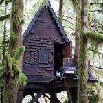 Znaleźli w środku lasu bajkowy domek na drzewie. To co było wewnątrz przeraziło ich do cna!