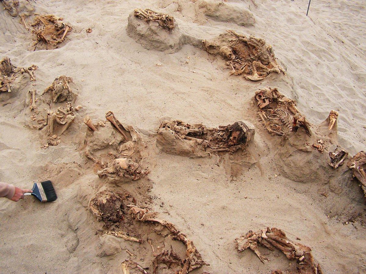 archeologów, dzieci, chan, chan, peru, historia, szkielety
