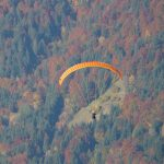 Paralotniarz RUNĄŁ do lasu. Szukały go dziesiątki osób. Finał poszukiwań okazał się KURIOZALNY!