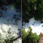 Skierniewice: niecodzienne zjawisko. Na podwórko spadła POTĘŻNA bryła lodu!