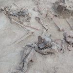 Znaleźli SZKIELETY na budowie drogi S5. Poruszająca historia [FOTO]
