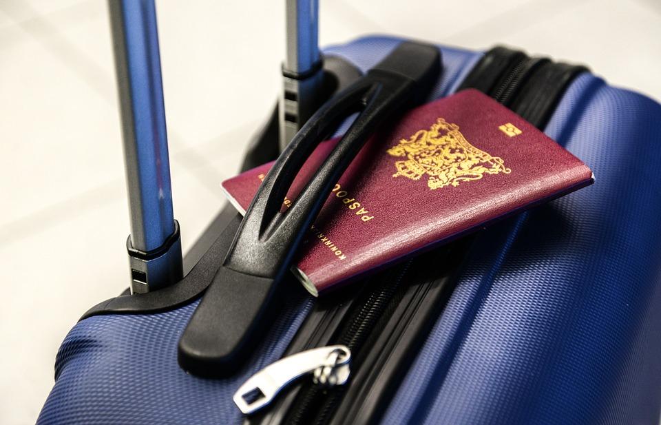 ambasadę, przywiózł skorpiona w bagażu