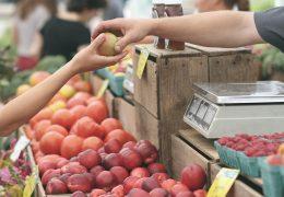 igły w owocach, owoce, soku owocowego kuracja