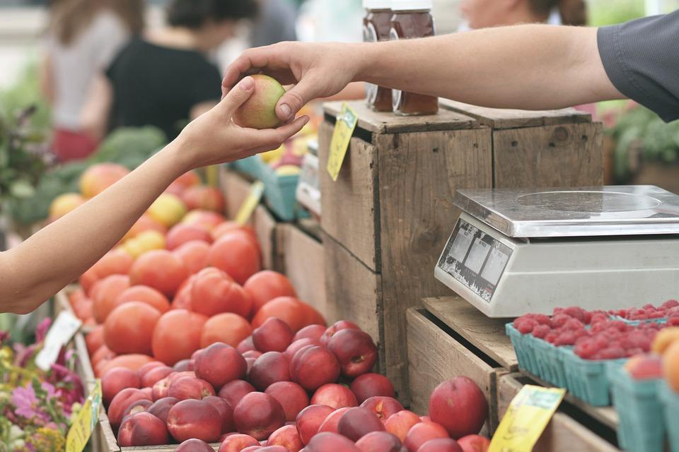 warzyw, igły w owocach, owoce, soku owocowego kuracja