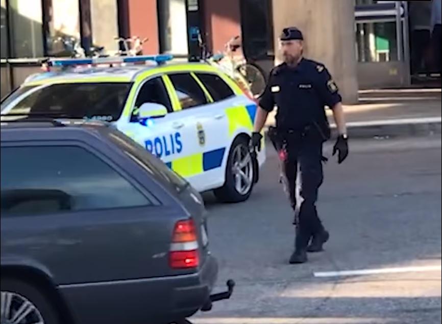 łabędź nie wykiwał szwedzkiego policjanta!