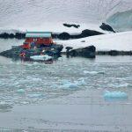 Polacy zamarzyli o pracy na Antarktydzie. Na to ogłoszenie odpowiedziało ponad 1,5 tys. osób!