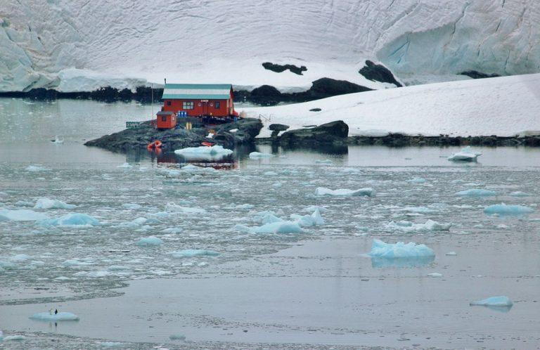 Naukowcy mają dobre wiadomości. Nad Antarktydą dzieje się coś niesamowitego