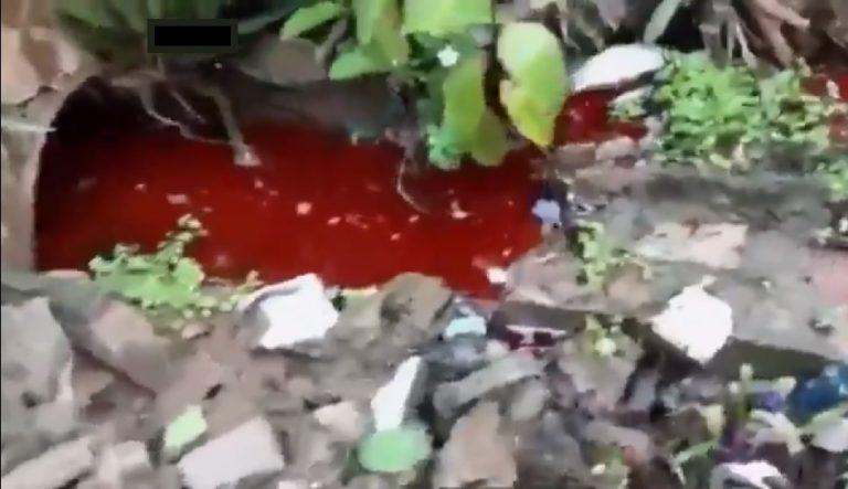 Krew barwiła wodę na czerwono. Mroczna tajemnica pewnej willi wyszła na jaw!