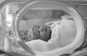 na porodówce
