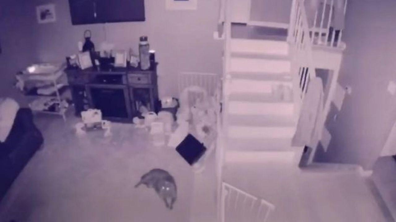 duch dziecka, przerażające nagranie, video