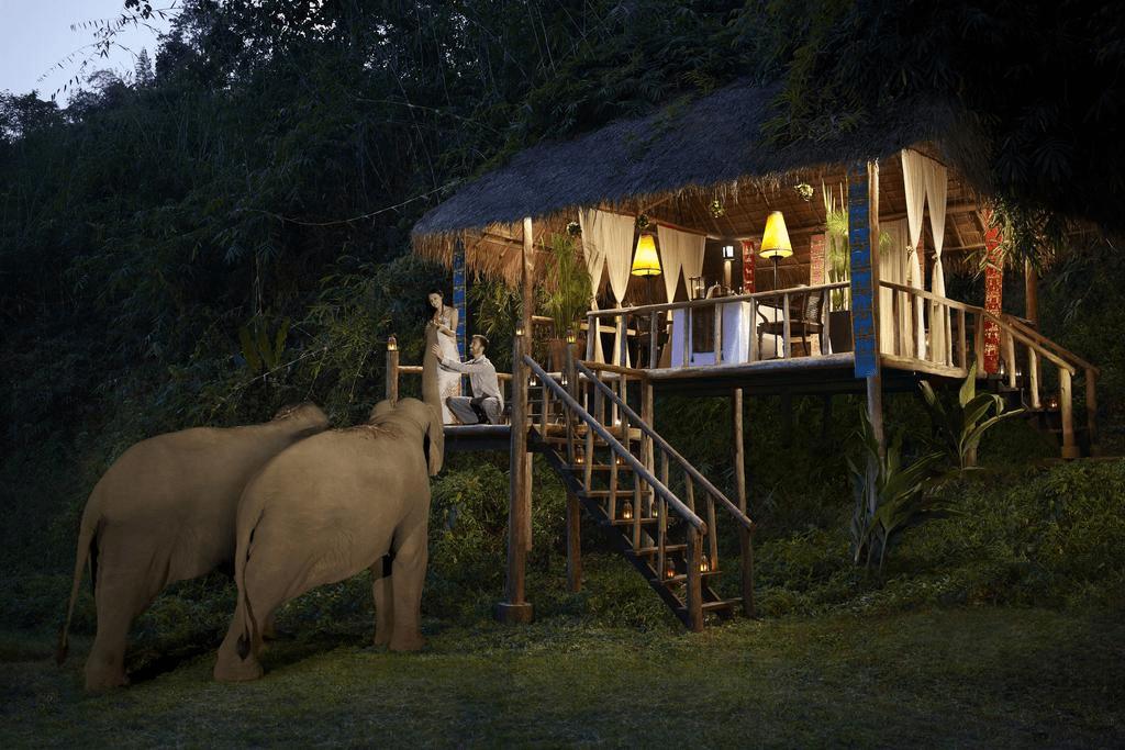 słoniami