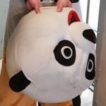 Agresywna PANDA grasowała po Krupówkach! Policja… (VIDEO)