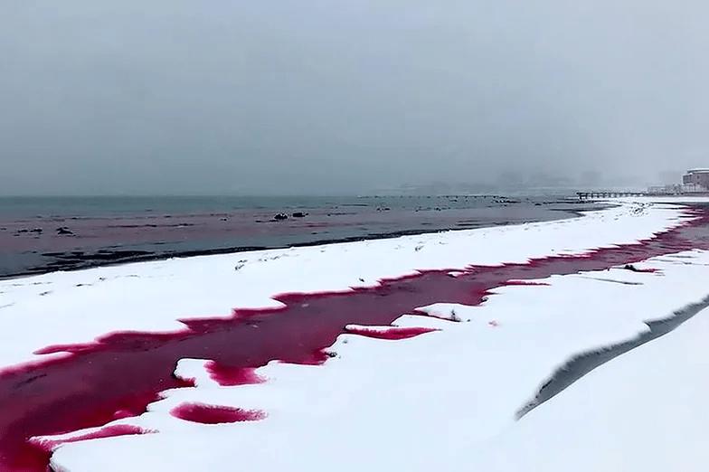 Morze Kaspijskie zabarwione na czerwono