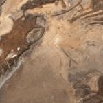 Odkryli niesamowitą skamielinę sprzed 150 MILIONÓW lat. Tak wyglądały POLOWANIA w erze dinozaurów