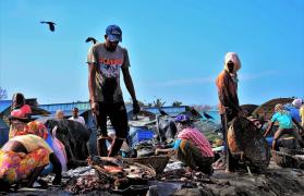bieda ONZ