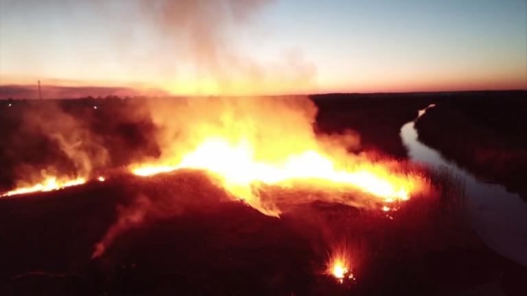 Płoną lasy w CZARNOBYLU. Ukraińskie władze mają złe wiadomości
