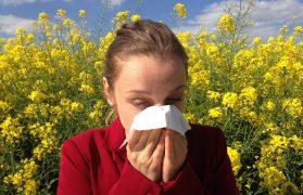 łagodzenia alergii