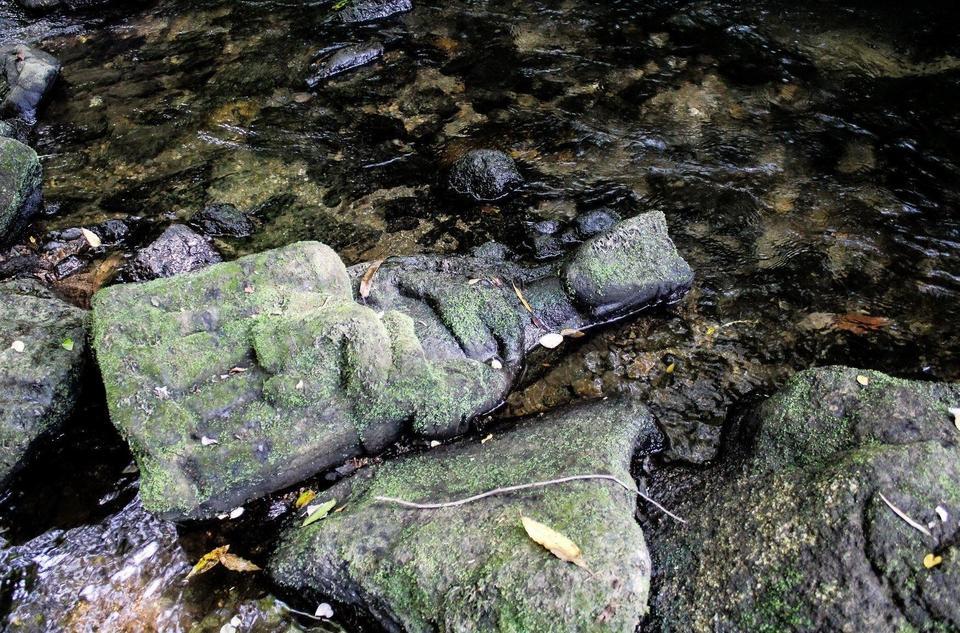 skarb w rzece