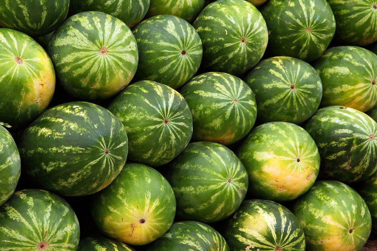 Niespodzianka wśród arbuzów! W transporcie owoców znajdowało się… (FOTO)