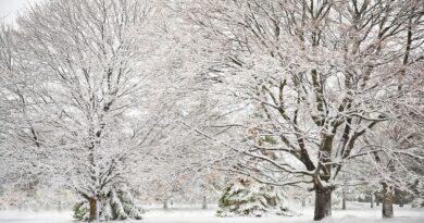 Atak zimy w Polsce? Może zrobić się biało