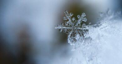 Jest NAJNOWSZA prognoza IMGW na zimę! Tego NIKT się nie spodziewał!